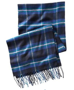 Blue Plaid Mens Tartan Scarf from Old Navy on sale for 15 dollars